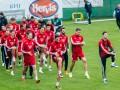 Сборная Венгрии определилась с заявкой на Евро-2016