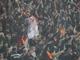 Хорватский след на Донбасс-Арене. Теперь можно / Фото пресс-службы ФК Шахтер