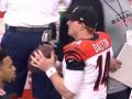 NFL: Видеобзоры первых матчей серии плей-офф