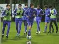 Динамо запланировало два контрольных матча