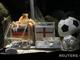 После матча 1/8 финала между сборными Англии и Германии моллюск из локальной звезды превратился в мировую известность