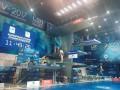 Чемпионат Европы по прыжкам в воду: видео трансляция