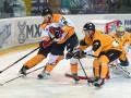 УХЛ: Рулав Одд уверенно обыграл  Белый Барс