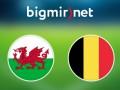 Уэльс - Бельгия 3:1 Трансляция матча Евро-2016