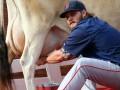 Доение коровы и радость победы: Спортивные кадры недели