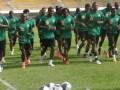 Камерун согласился приехать на матч с Украиной за 150 тысяч евро