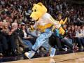 Талисман команды НБА удивил болельщицу на День святого Валентина