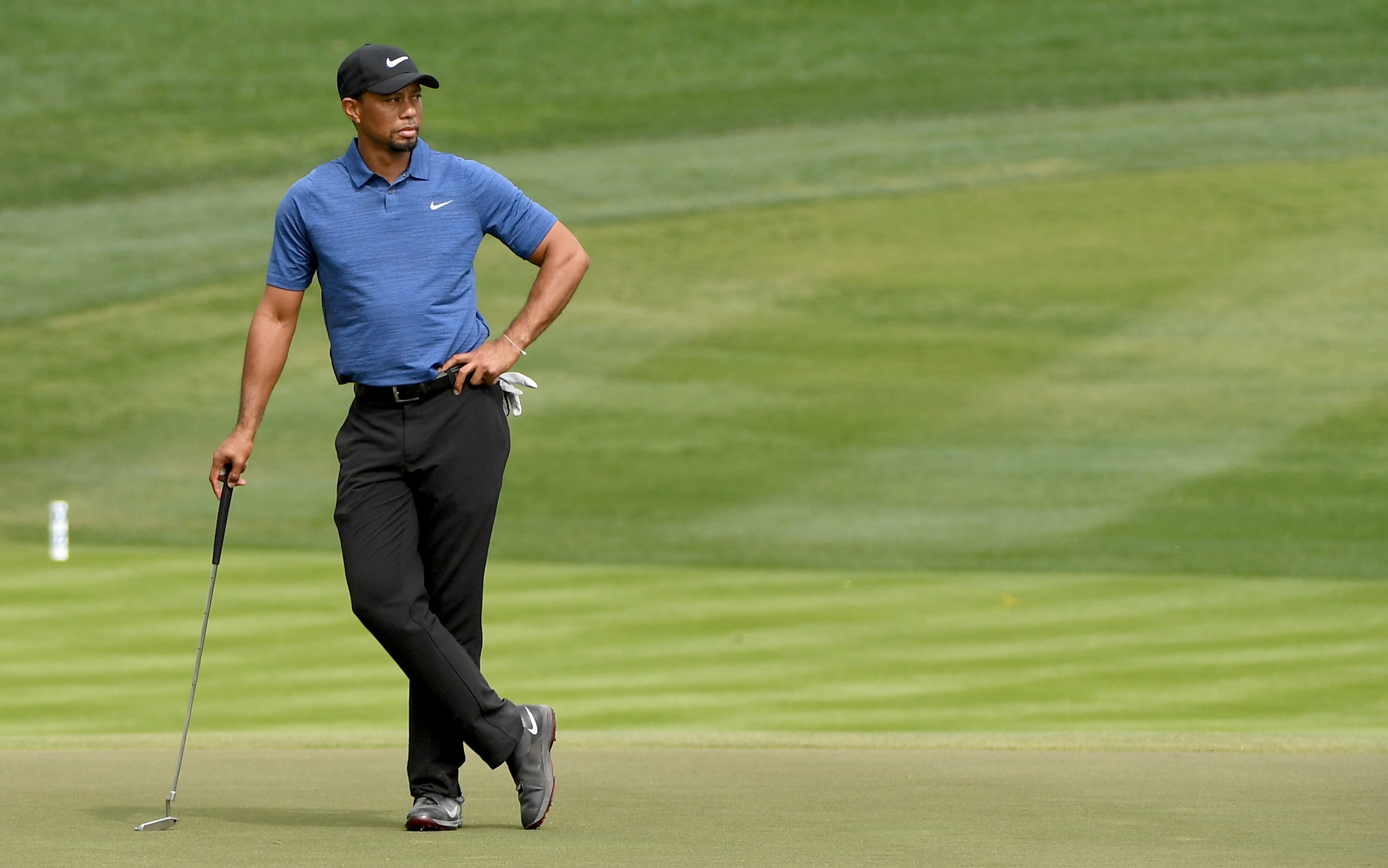 a history of tiger woods success in playing golf Tiger woods counts it a success that he's playing golf again this might be one time that tiger woods doesn't measure success on the golf course by the score on his card.