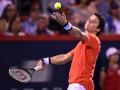 Раонич снялся с US Open из-за травмы