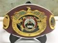 WBO создала новый чемпионский титул