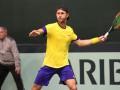 Украина уступила Швеции в пятиматчевой борьбе Кубка Дэвиса