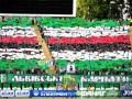 Карпаты поддержат украинские болельщики из Ирландии и Великобритании