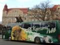 Львовские Карпаты отправятся в Киев на Евромайдан