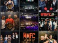 WWFC: итоги 2017 года