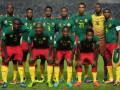 Камерун огласил предварительную заявку на ЧМ-2014
