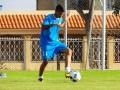 Венесуэльский клуб уволил двух футболистов после издевательств над котом