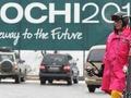 Эксперты ООН раскритиковали подготовку Олимпиады-2014 в Сочи