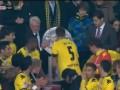 Желтое счастье. Боруссия отмечает чемпионство