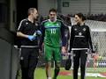 В стане соперника: Четыре игрока Северной Ирландии получили травмы перед Евро-2016