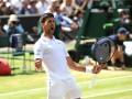 Джокович: Покрытие на Уимблдоне подчеркивает достоинства игры Федерера