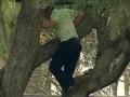 Игроку в гольф пришлось залезть на дерево для удара