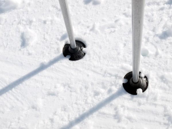 Выбрать палки для лыж