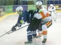 УХЛ: Донбасс обыграл Белый Барс, Львы взяли реванш у Волков