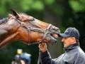 Спортивные кадры недели: Наглая лошадь и радость Барселоны
