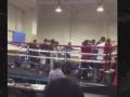 В США на турнире по боксу произошла массовая драка