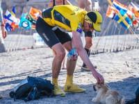 Австралийский бегун приютил бездомную собаку, которая бежала с ним марафон