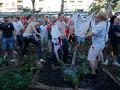 Нашествие варваров. Английские фанаты ломают деревья в сердце Киева