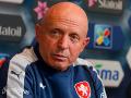 Тренер чехов выделил троих игроков сборной Украины, помимо Коноплянки и Ярмоленко