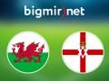 Уэльс - Северная Ирландия 1:0 Онлайн трансляция матча Евро-2016