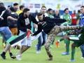 Фанаты с флагами Палестины напали на израильских игроков во время матча (фото, видео)