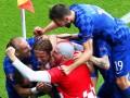 Хорватский болельщик выбежал на поле и отпраздновал гол с командой