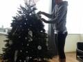 Шарапова и Джокович засветили свои рождественские елки (ФОТО, ВИДЕО)