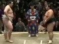 Судья в нокауте. Борец сумо выбросил рефери с ринга