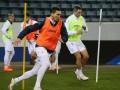 Степаненко посетовал на отсутствие VAR в матче Франция - Украина