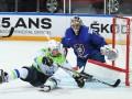 Франция - Словения 4:1 Видео шайб и обзор матча ЧМ по хоккею