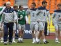 Сборная Ирландии намерена побеждать на Евро-2012 за счет силы духа