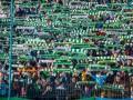 Объединенные футболом: Ультрас Карпат во Львове болели за Севастополь
