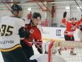 Хоккей: Донбасс разгромно побеждает в поединке с Белым Барсом
