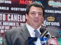 WBC серьезно накажет боксеров-профессионалов, которые выступят на Олимпиаде