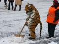 Готовь сани летом: Россия начинает запасаться снегом для Олимпиады в Сочи