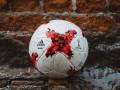 В интернете появились первые снимки мяча
