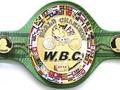 Чемпион мира по боксу разбился в ДТП