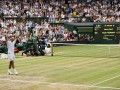 Уимблдон (ATP): Джокович обыграл Андерсона в финале