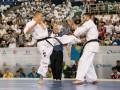 Украинец завоевал историческую медаль на чемпионате мира по киокушин каратэ