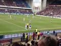 Прикол дня: Удивленный петух выскочил на футбольное поле