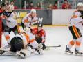 УХЛ: Донбасс обыграл Кременчук, Белый Барс разгромил Галицких Львов